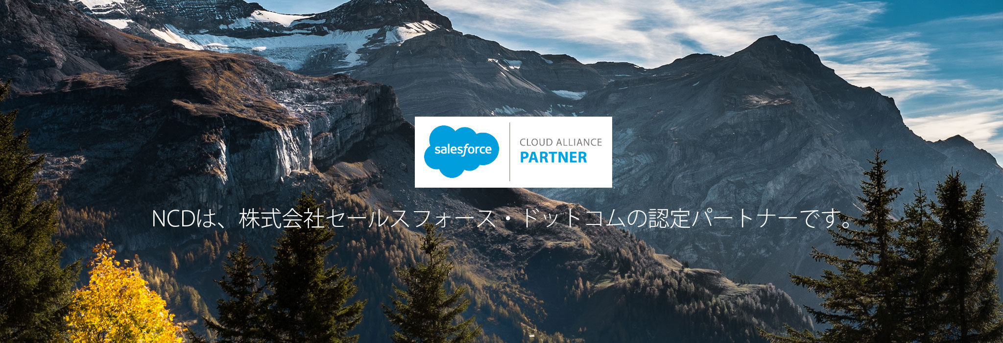 CLOUD ALLIENCE PARTNER