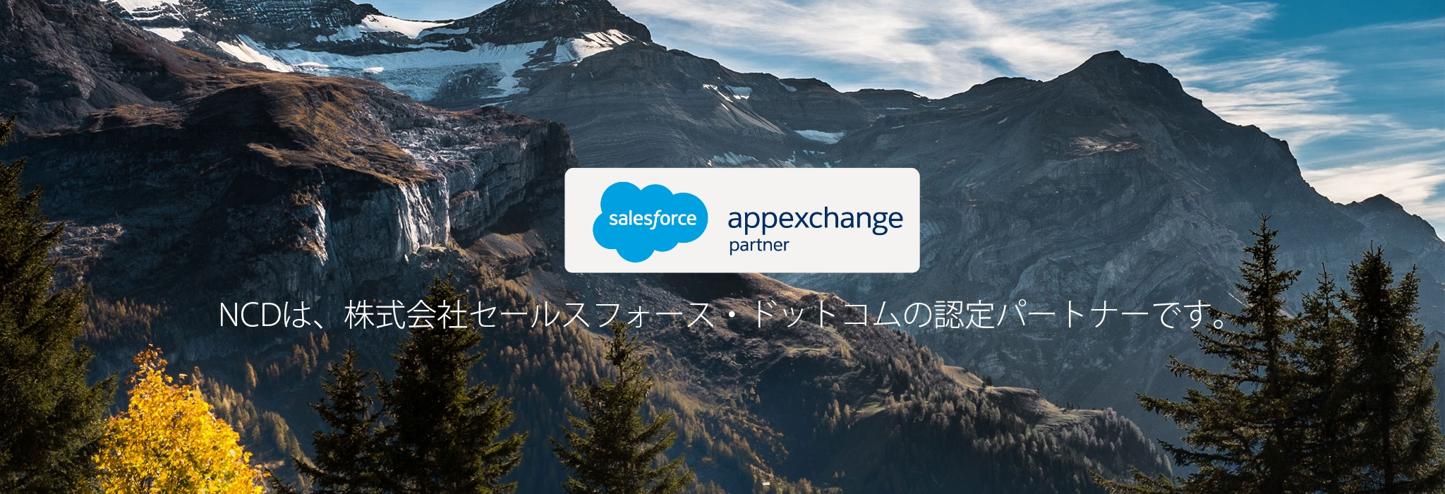 appexchange partner