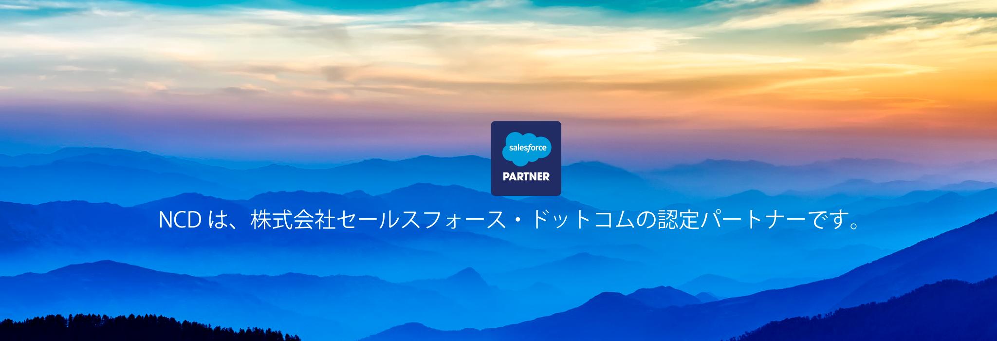 appexchange partner